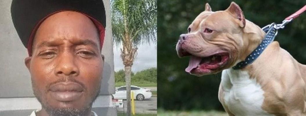 Hallan cadáver de un hombre con marcas de 100 mordidas de perro