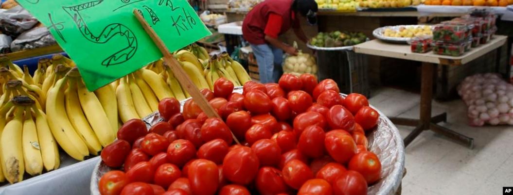 Gobierno federal espera lograr acuerdo para exportar tomate a EU