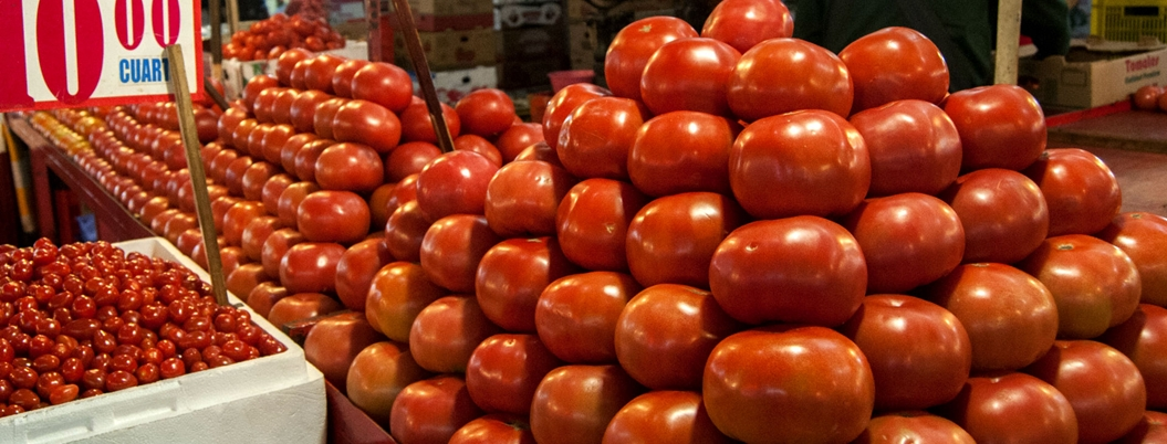 EU reembolsará 100 mdd a tomateros mexicanos tras acuerdo