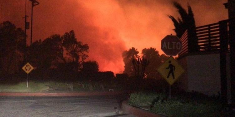 Conafor moviliza brigadas para atender incendios en BC 1