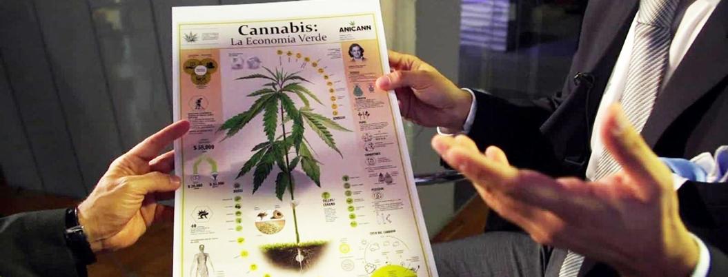 Quitarán límite a portación de marihuana en México