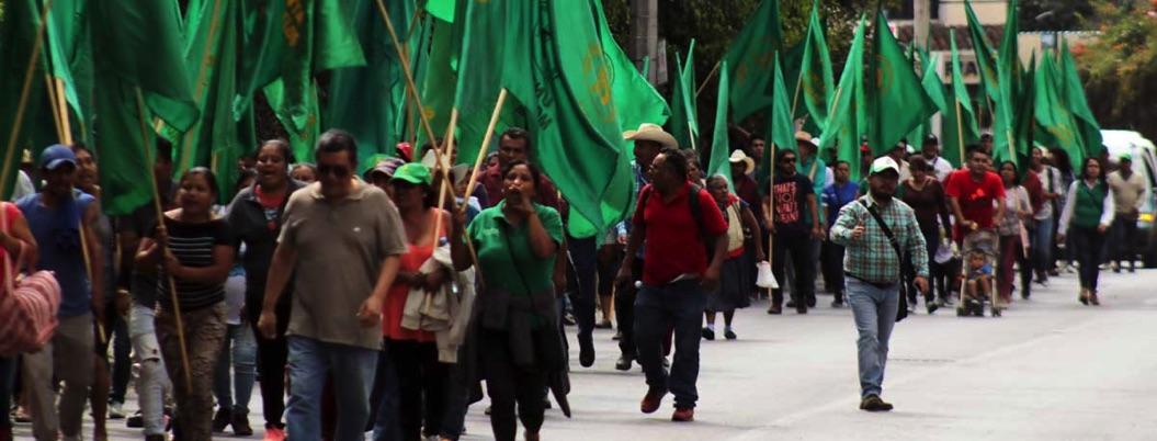 UNTA se levanta en rebelión contra López Obrador y la 4T