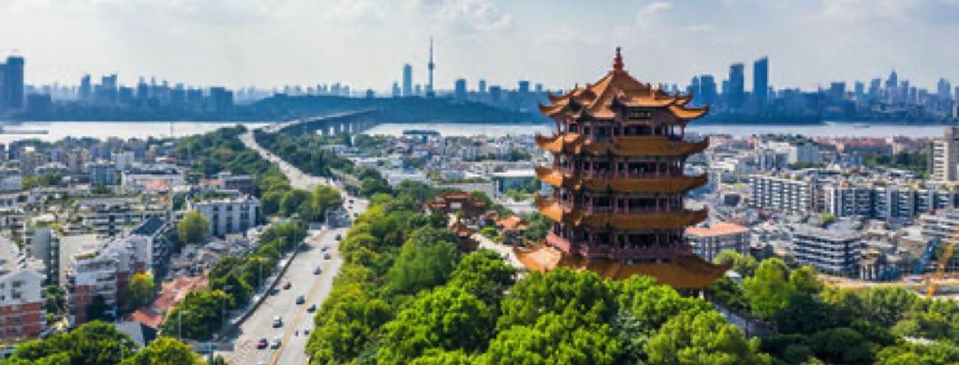 Wuhan, urbe de 11 millones de habitantes clausurada por coronavirus
