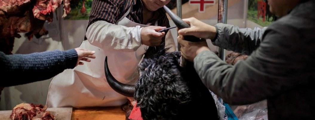 China prohíbe venta de animales salvajes por coronavirus de Wuhan