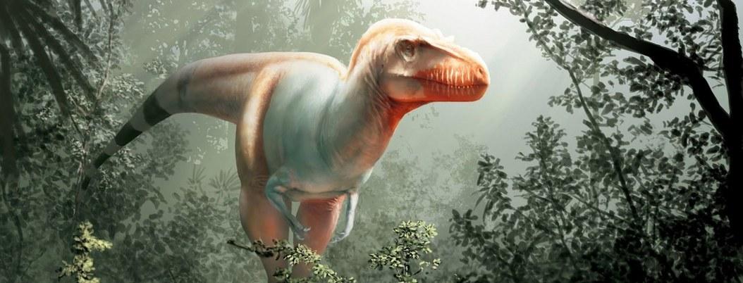 Hallan nueva especie de dinosaurio de hace unos 79 millones de años