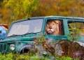 león conduciendo