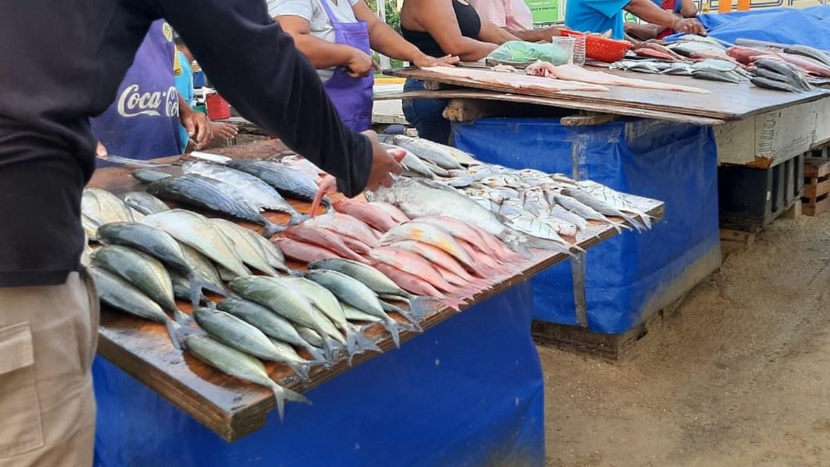 'Las congojas para mí no existen', ni por el covid, dice pescador de Acapulco 9
