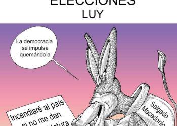 El don orejas de las elecciones | Luy 2