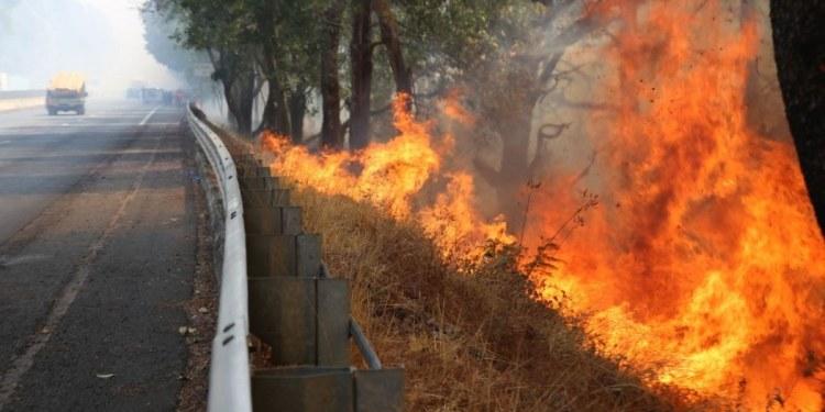 Combaten fuerte incendio en la autopista México-Cuernavaca 1