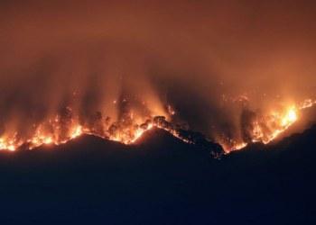 Incendio consume 50 hectáreas de bosque en Tepoztlán, Morelos 7
