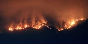 Incendio consume 50 hectáreas de bosque en Tepoztlán, Morelos 21