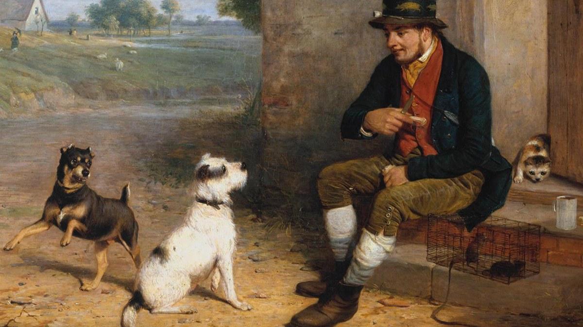 El ladrón de valiosos perros falderos, una práctica lucrativa desde el siglo XVIII 3