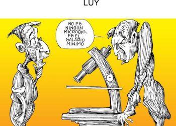 Revisión microscópica | Luy 55