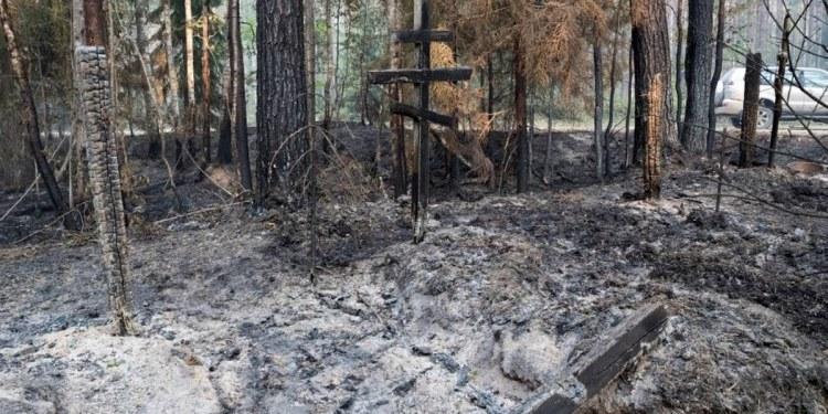 Incendios forestales arrasan con siete mil hectáreas en Rusia 1