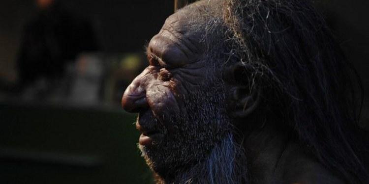 Científicos descubren que neandertales tenían varios tipos de sangre 1