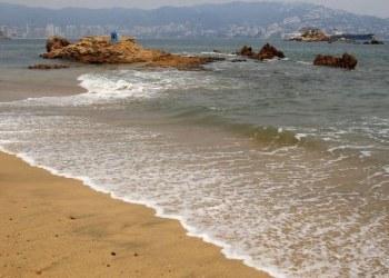 Profepa investigará supuesto vertimento de aguas negras a la bahía de Acapulco 63