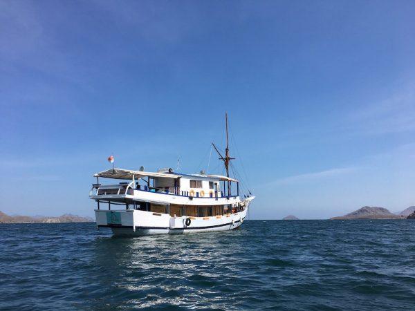 Sewa Kapal Komodo Murah, sewa kapal komodo, kapal komodo, sewa kapal labuan bajo, kapal labuan bajo murah