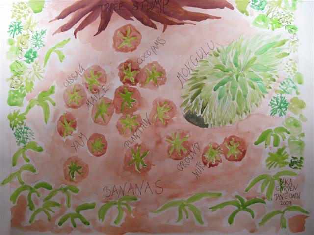 CHELSEA Baka garden sketch (Small)