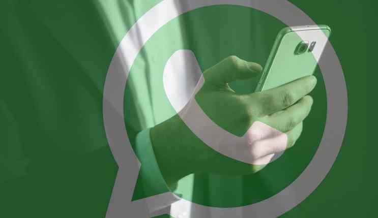 Chatbot Whatsapp