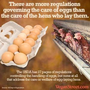 moreregulationsgoverningeggs-lg