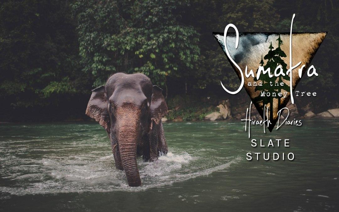 Event: Sumatra and the Money Tree Fundraiser for Sumatran Wildlife Sanctuary