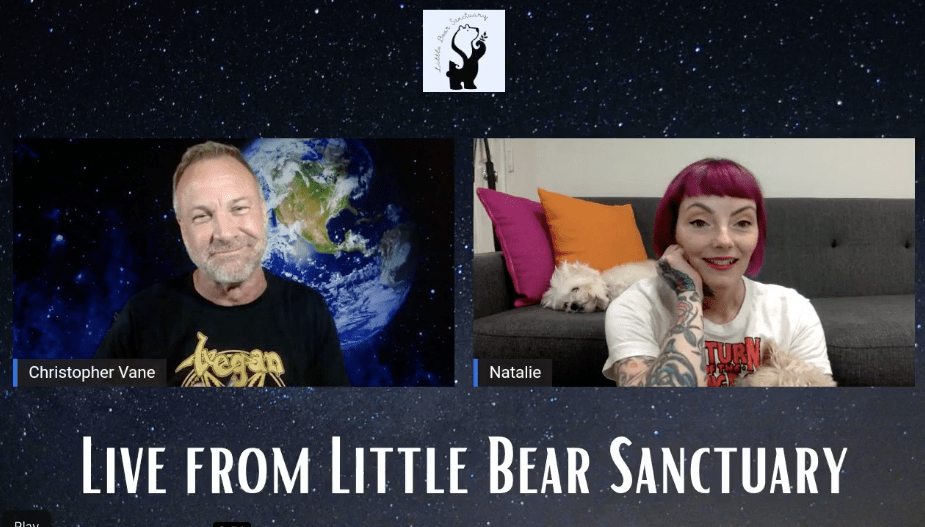 Podcast: Live from Little Bear Sanctuary