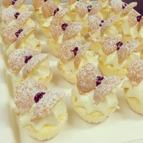 butterfly-cakes