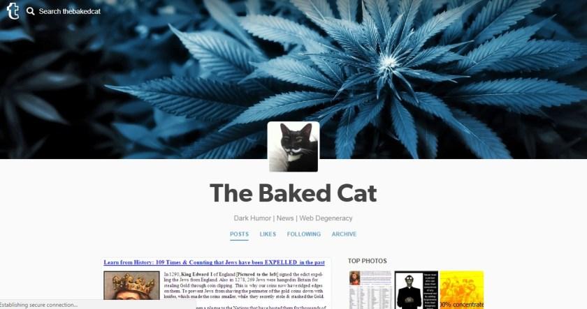 Screenshot 9 - Follow Us on Tumblr