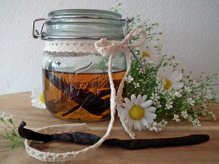vaniljeekstrakt_vanilje_vaniljeessens_vaniljesukker_vaniljefrø_vaniljestang_vaniljepulver_oppskrift_bakemagi_norgesglass