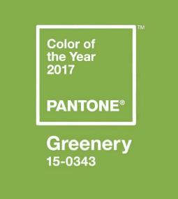 color trend design interior dallas 2017