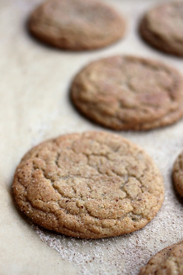 Chewy Brown Sugar and Rosemary Snickerdoodles- Baker Bettie