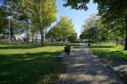 Kellogg Park Across the Street