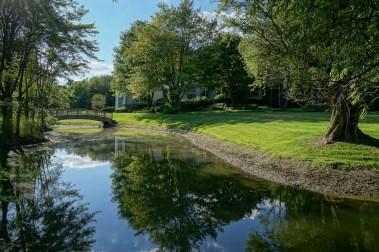 Pond, Island and Bridge