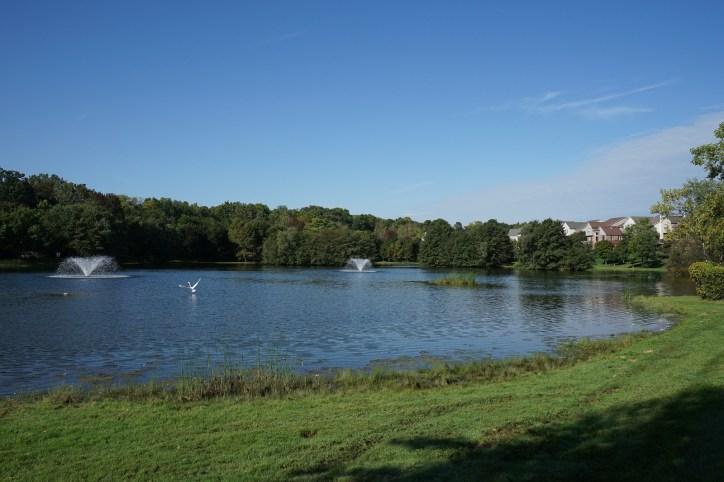 Association Lake