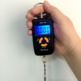 Pocket LCD Electronic Hanging Hook Scale