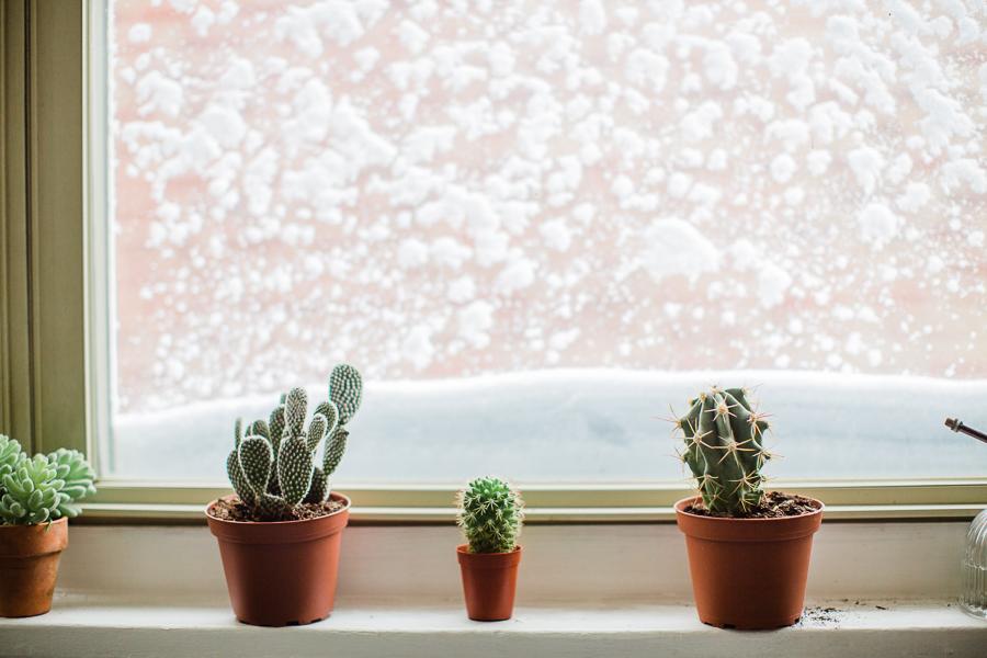 snowdayblog-1 Snowzilla Our Life
