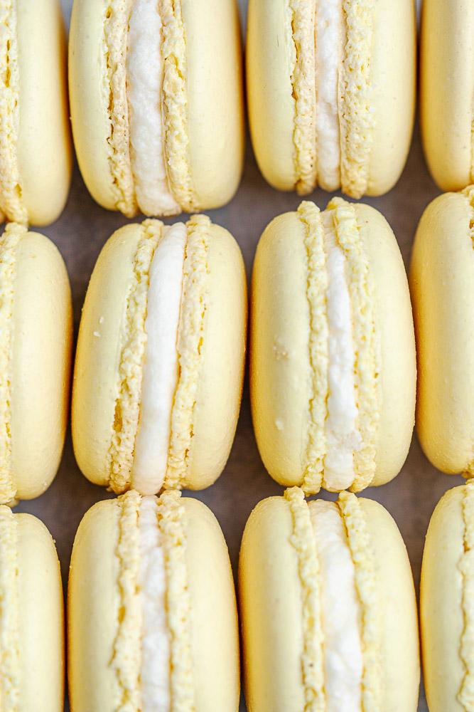rows of lemon macarons