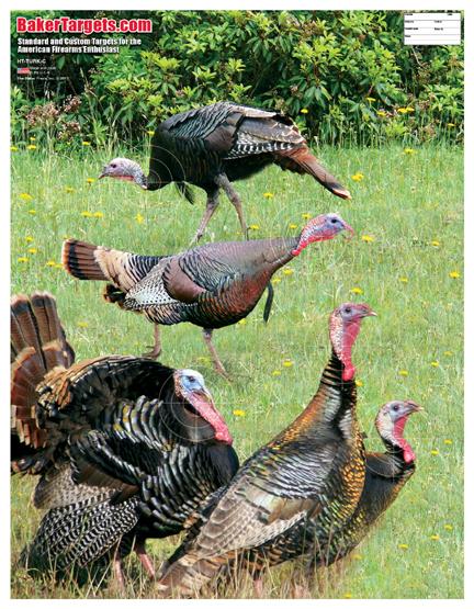 turkey target-color