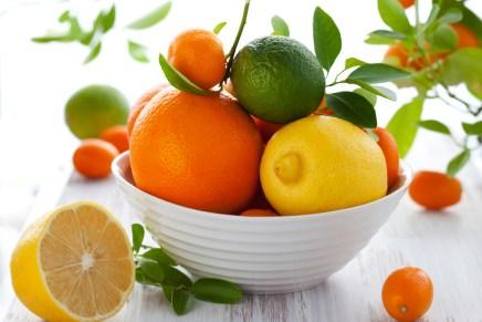 פרוייקט פירות ההדר הגדול