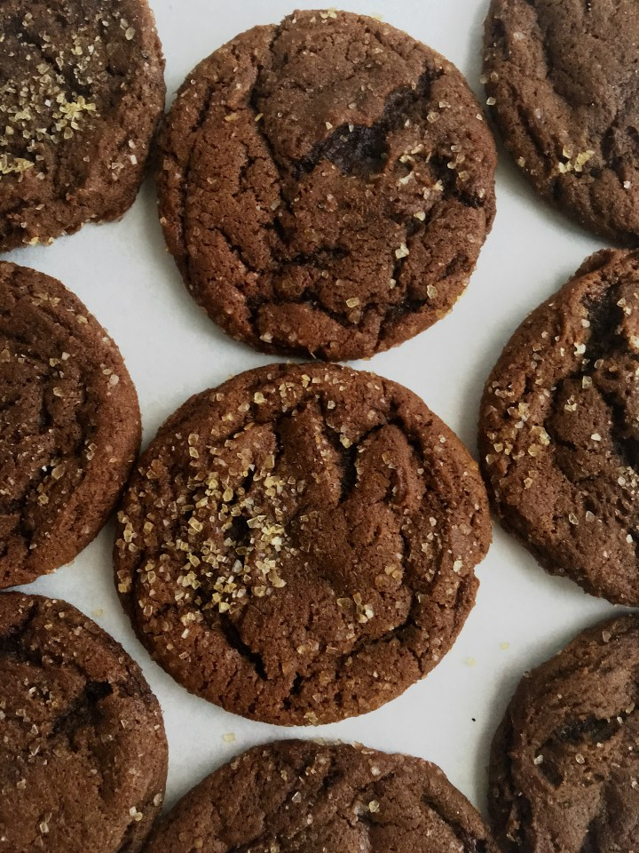 Cocoa Molasses Spice Cookies