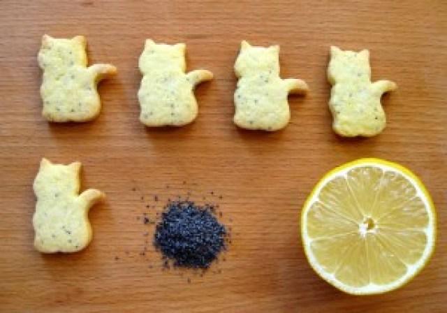 Biscotti all'olio di oliva al limone e semi di papavero
