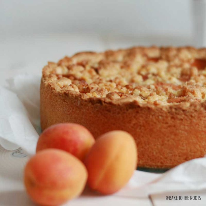 Apricot Crumb Cheesecake   Bake to the roots