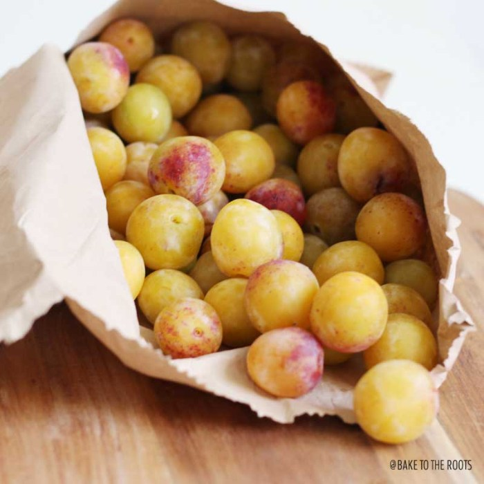 Mirabelle Plum Almond Tart   Bake to the roots