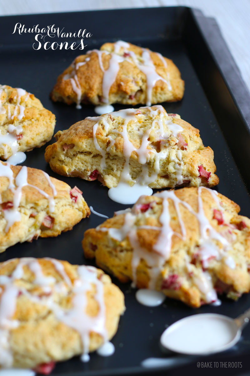 rhubarb vanilla scones bake to the roots. Black Bedroom Furniture Sets. Home Design Ideas