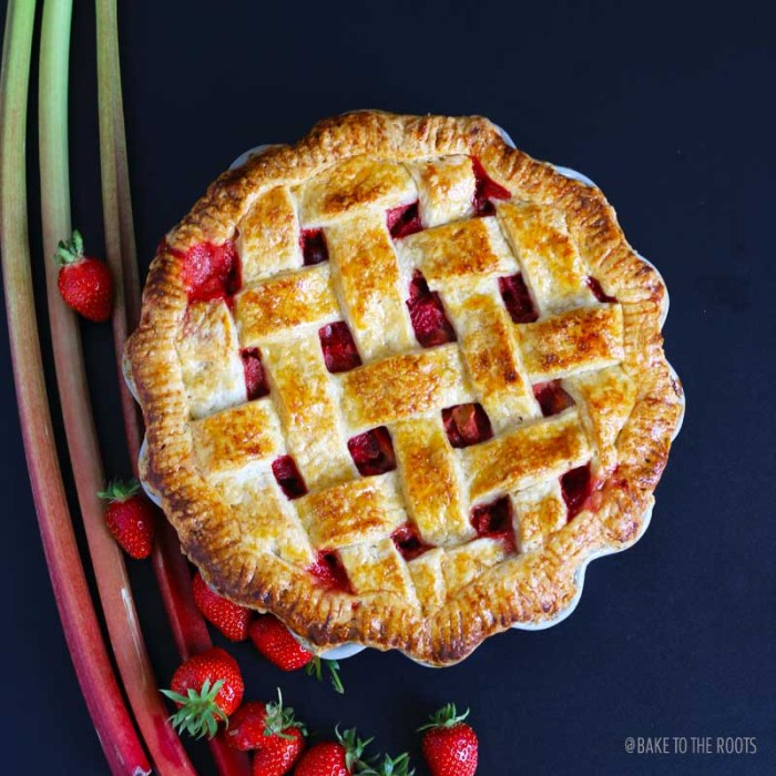 Strawberry Rhubarb Pie   Bake to the roots