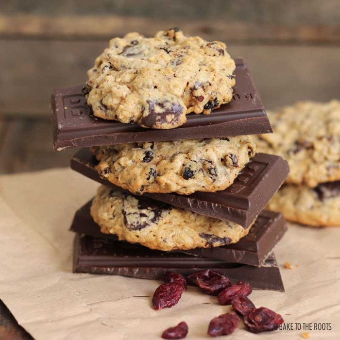 Oatmeal Barberry Chocolate Cookies | Bake to the roots