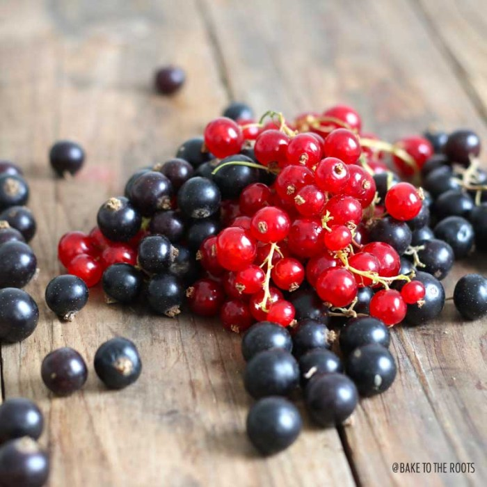 Red & Black Currant Mazarintårta | Bake to the roots