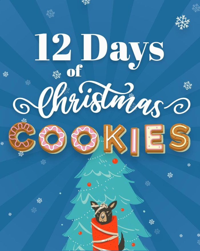 12 Days of Christmas Cookies | Bake to the roots