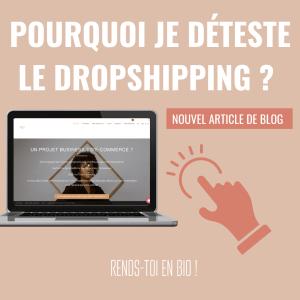 Pourquoi je déteste le dropshipping ?