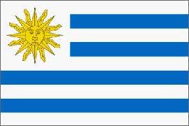 Amazon.com: Uruguay Flag Nylon 5 ft. x 8 ft.: Home & Kitchen
